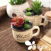 創意仿真綠植多肉小盆栽-擺設裝飾品