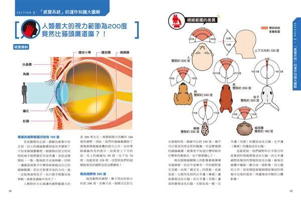 圖解人體:探索從頭到腳、由裡而外不為人知的身體奧祕!日本醫學博士的紙上解剖書..