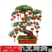 新年過年大紅植絨小燈籠掛飾盆景室內戶外結婚喜慶場景布置裝飾品 小艾新品