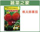 【綠藝家】G22.桃太郎蕃茄種子5顆...