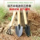 【免運】園藝工具組 三件套 盆栽工具 鐵鍬 鐵鏟 鐵耙 多肉植物 種植 迷你小巧 五金 園藝用品