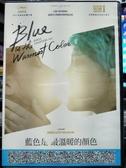挖寶二手片-P25-002-正版DVD-電影【藍色是最溫暖的顏色】-女同志影展片(直購價)