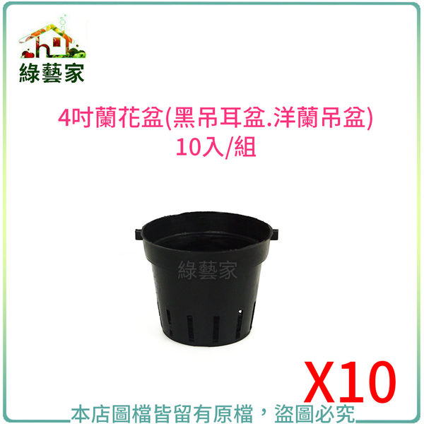 【綠藝家】5吋蘭花盆(黑吊耳盆.洋蘭吊盆)10入/組