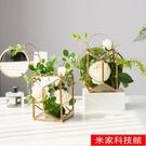 桌面盆栽 輕奢仿真植物玫瑰花盆景裝飾客廳室內假盆栽擺設綠植桌面輕奢擺件 米家WJ