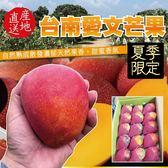 【果之蔬-全省免運】台南愛文芒果 (含箱重5斤±10%/約9-12入)