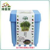 【綠藝家】iPlant小農場系列-豆芽菜