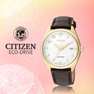 CASIO 手錶專賣店   CITIZEN星辰_EO1172-05A_光動能_強化玻璃鏡面_日 期/星期_真皮_女錶