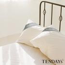 枕套-TENDAYs-健康防螨枕套 單入...