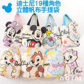 【迪士尼立體帆布手提袋】Norns Disney 米奇 米妮 奇奇蒂蒂 小熊維尼 帆布袋 包包 環保袋 小飛象