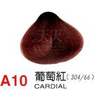 【燙後染髮】奇靈鳥 二代染髮劑 A10-葡萄紅色 [31630]