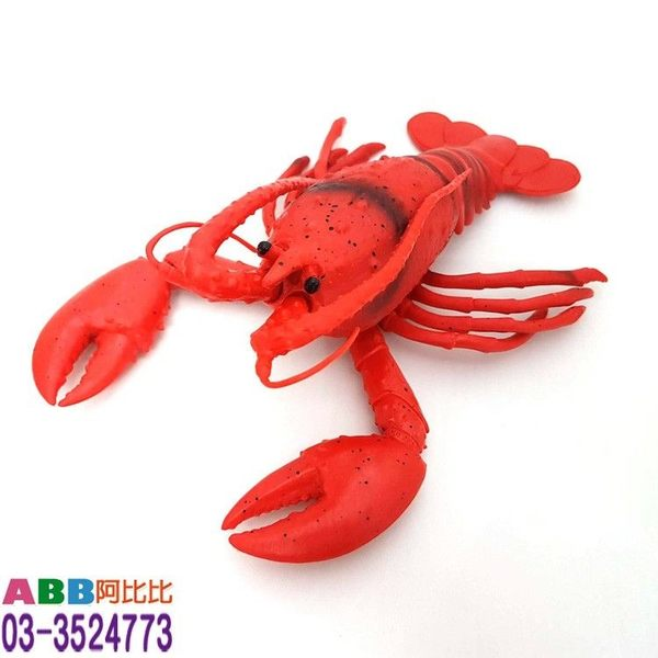 A1575★龍蝦_26cm#假蔬菜假食物假水果假錢假鈔擬真仿真#食物模型食品模型紅包袋紅包