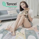 [小日常寢居]#HT033#絲柔親膚奧地利TENCEL天絲4.5x6.5尺單人薄被套(台灣製)萊賽爾Lyocell
