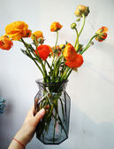(超夯免運)花瓶棱形小口徑矮款小清新水仙洋牡丹香雪蘭灰色幹鮮花玻璃插花瓶