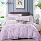 天絲 Tencel 念初 床包冬夏兩用被 特大四件組  100%雙面純天絲 伊尚厚生活美學