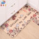 地墊門墊進門腳墊家用臥室地毯廚房浴室吸水防滑墊門口衛生間墊子
