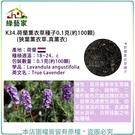 【綠藝家】K34.荷蘭薰衣草種子0.1克...