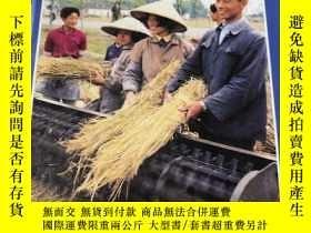 二手書博民逛書店COUNTRIES罕見OF THE WORLD ChinaY18062