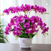 618好康鉅惠 假花仿真花蝴蝶蘭套裝擺件盆栽塑料花盆景