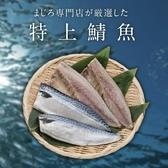 【超值免運】挪威薄鹽鯖魚切片5片組(150公克/1片)