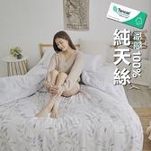 #TCL36#奧地利100%TENCEL涼感純天絲5尺標準雙人床包枕套三件組(不含被套)床單 床套【小日常寢居】