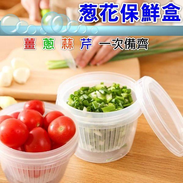 蔥花保鮮盒 薑蔥蒜芹菜配料保鮮收納盒 水果瀝水盒-艾發現