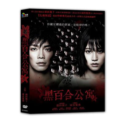 黑百合公寓DVD 前田敦子/成宮寬貴