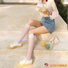 小腿襪薄款透明長jk日系襪子女中筒半筒絲襪短【公主日記】【小獅子】