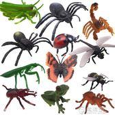兒童早教益智玩具仿真昆蟲玩具模型動物塑膠模型昆蟲1-2-3-6周歲   電購3C