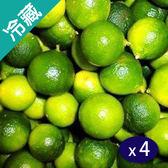 台灣金桔(600G±10%)/盒X4【愛買冷藏】