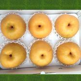 寶島甘露梨-六合6粒(共8.5台斤)-大水梨