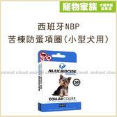 寵物家族-【買一送一】西班牙NBP苦楝防蚤項圈(小型犬用)
