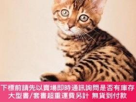 二手書博民逛書店My罕見Cat Record Book-我的貓記錄簿Y364727 Rachael Hale Har...