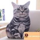 小寵物貓咪抱枕公仔毛絨玩具搞怪床頭靠墊喵星人貓貓抱著【小獅子】