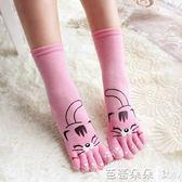 五指襪女 超萌小老虎可愛女士五指襪 秋冬中筒款優質全純棉 舒適透氣保暖 芭蕾朵朵