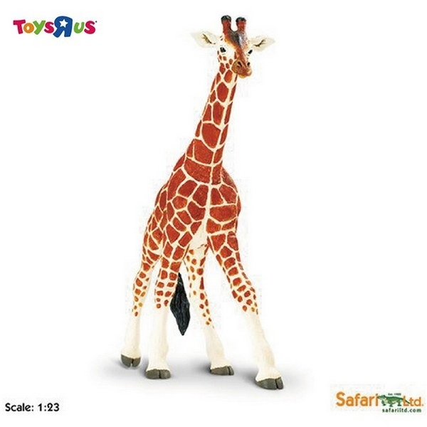 Safari Ltd 長頸鹿-大