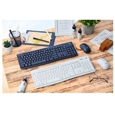 Logitech 羅技 MK295 石墨灰/珍珠白 靜音 多媒體快捷鍵 10M使用範圍 2.4GHz 無線連線 鍵盤滑鼠組