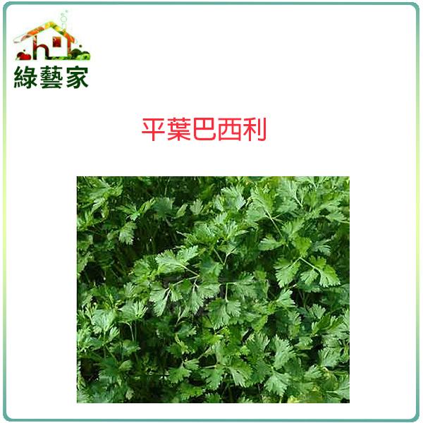 【綠藝家】F16.平葉巴西利種子300顆