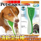 【zoo寵物商城】美國petstages》1081耐咬潔牙玩具/清新潔牙棒-S號