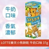 LOTTE樂天小熊餅乾 牛奶口味 37g