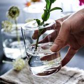 北歐風簡約英文透明玻璃花瓶干花插花器擺件香薰瓶植物花瓶 挪威森林
