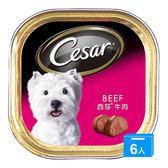 西莎精緻狗罐頭-牛肉100g*6入【愛買】