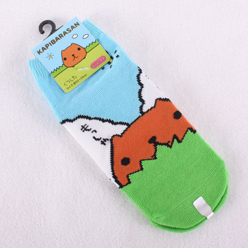 Kapibarasan 水豚君田園系列襪子-大