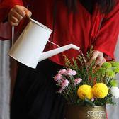 澆水壺家用園藝輕便澆花長嘴壺鐵藝復古手工漆 艾維朵