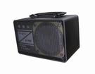 黑舞士FM-101C (鋰電版),附對錄線,充電式60W喇叭,擴音機,跳舞機,保固一年