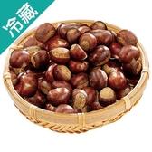 【嚴選】天津鮮栗子 1 袋 (600g ± 5%/ 袋 )【愛買冷藏】