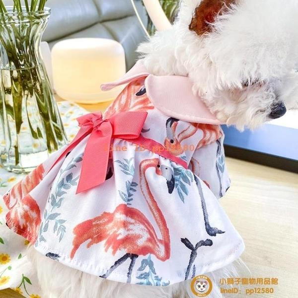 夏季薄款狗狗衣服母狗泰迪比熊博美幼犬公主連衣裙子舒適款小型犬小狗狗【小獅子】