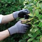 快速出貨家庭園藝手套防月季刺扎防護手套栽種花拔草透氣耐磨園林農活