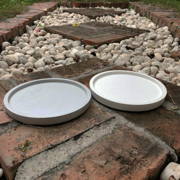 (BEAGLE) 圓型創意水泥托盤(特大) 多肉水泥花器/仙人掌水泥花盆/水泥盆器-直徑:17.5公分