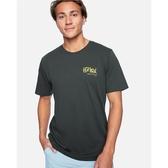 Hurley M BNZ HAVE FUN OG SS T恤-綠