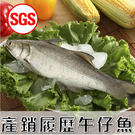 SGS檢驗 產銷履歷午仔魚1尾(250g...